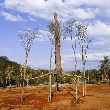 Elevazione_c361 - installazione Inhotim, Brasile at the Serpentine Marathon