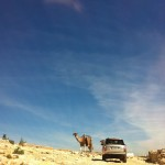 New Range Rover driving through Morocco