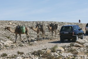 New Range Rover in Morocco