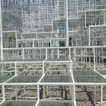 Serpentine Gallery Pavilion 2013 by Sou Fujimoto Image© Nargess Shahmanesh Banks