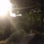 Toscana ©Design Talks