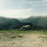 Navarran Pyrenees