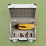 """Zac Langdon-Pole's """"Residuals (a)"""" 2018, aluminum tool case with Greater Bird of Paradise taxidermy, Muonionalusta meteorite from Sweden, Nantan meteorite from China"""