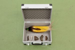 "Zac Langdon-Pole's ""Residuals (a)"" 2018, aluminum tool case with Greater Bird of Paradise taxidermy, Muonionalusta meteorite from Sweden, Nantan meteorite from China"